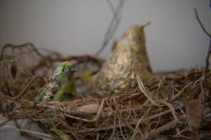 Nesting-two birds