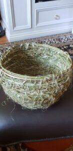 basket wisteria vine