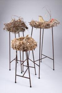 where birds sing -fibre,tissue paper,roots,ree bar